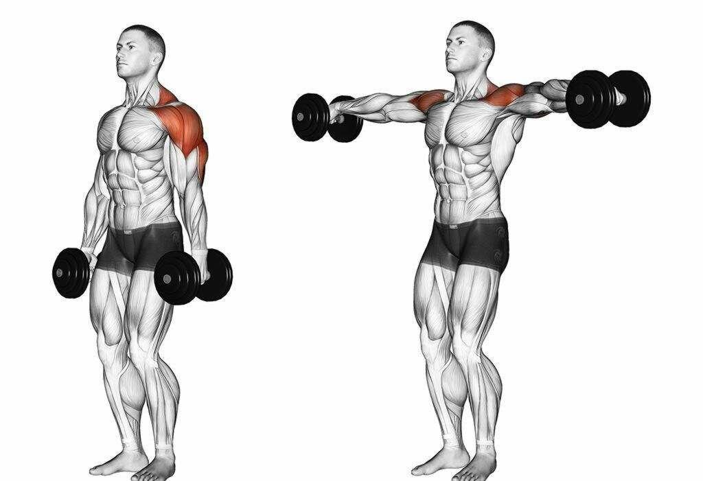 Как накачать плечи: хардкорная тренировка дельт