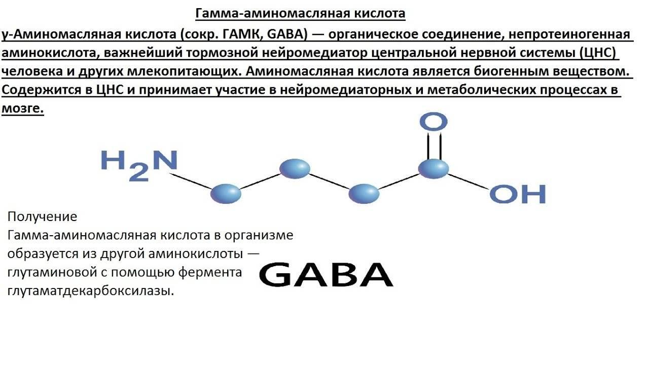 Гамма-аминомасляная кислота (гамк), аминалон [lifebio.wiki]