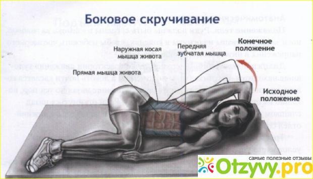 Как накачать косые мышцы живота: упражнения для мужчин и женщин