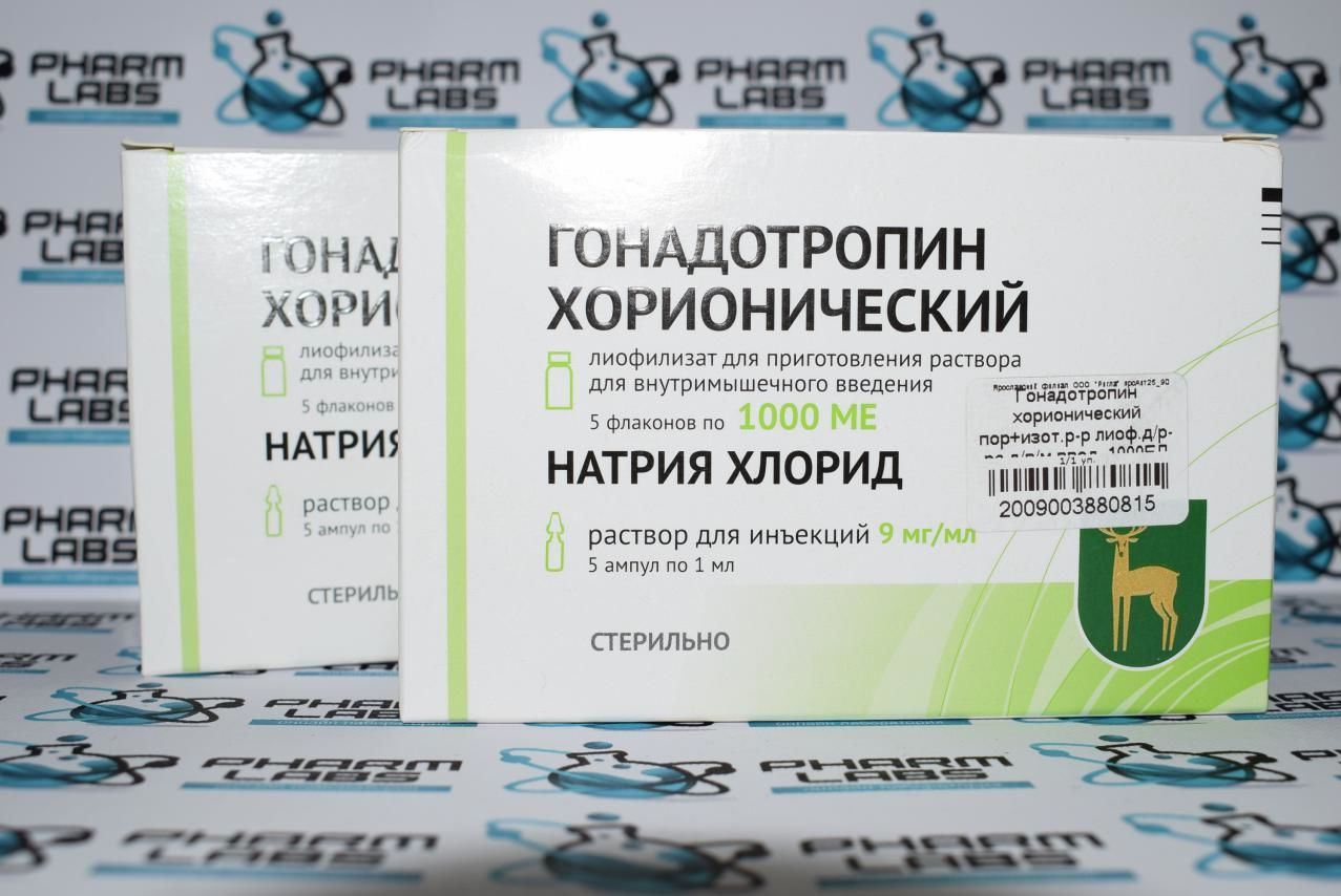 Гонадотропин хорионический на курсе и после курса стероидов   специалист по использованию анаболических стероидов и контролю здоровья