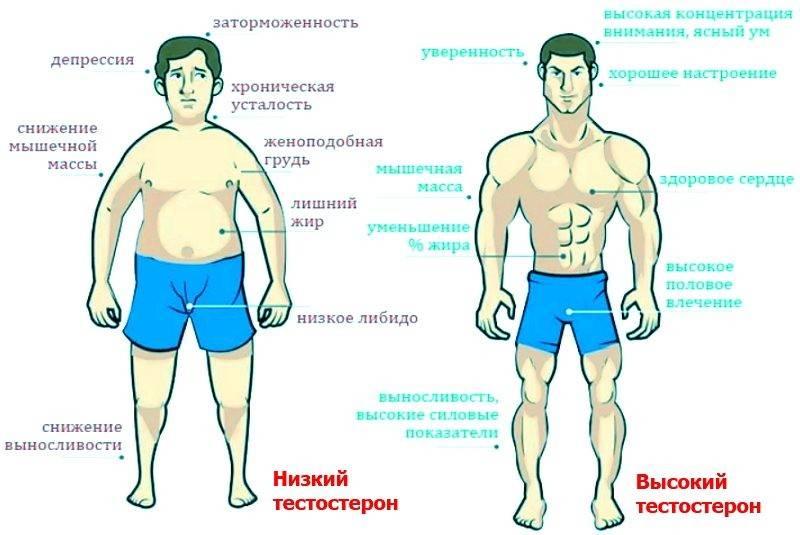Признаки пониженного уровня тестостерона у пожилых мужчин