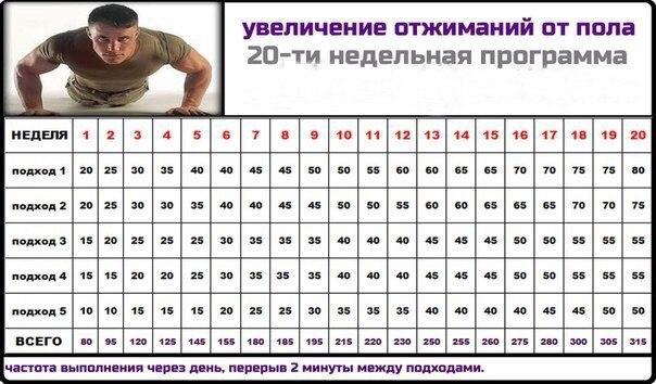 Отжимайтесь месяц по 100 раз в день. вот что произойдёт с вашим телом после этого