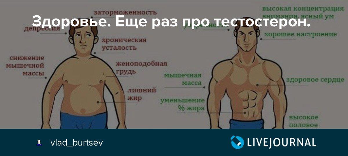 Семь способов повысить тестостерон у мужчин