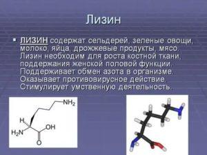 Лучшие пищевые источники фенилаланина