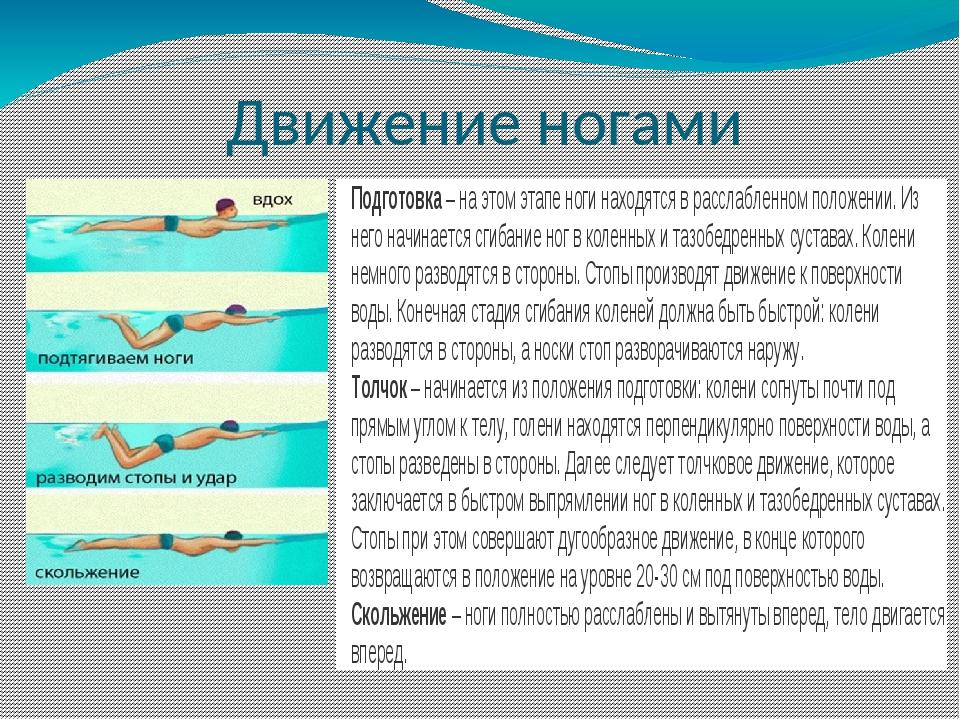 Как научиться плавать кролем самостоятельно: уроки плавания для начинающего взрослого человека, подборка видео по обучению вольному стилю