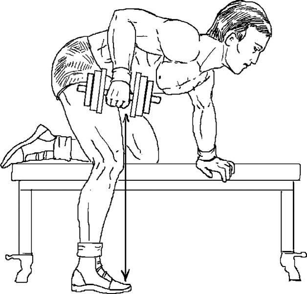 Жим гантелей на наклонной скамье
