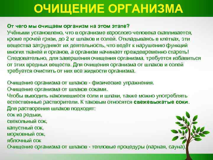 Рецепты народной медицины для очищения организма