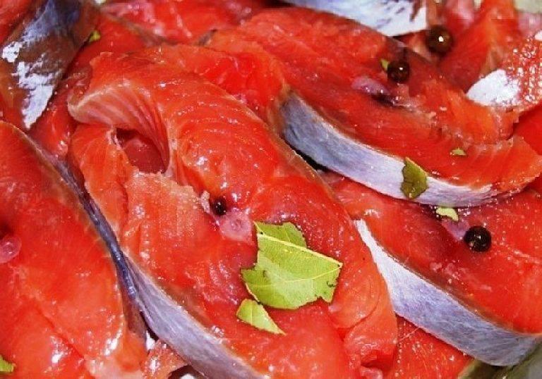 Самый правильный рецепт засолки красной рыбки