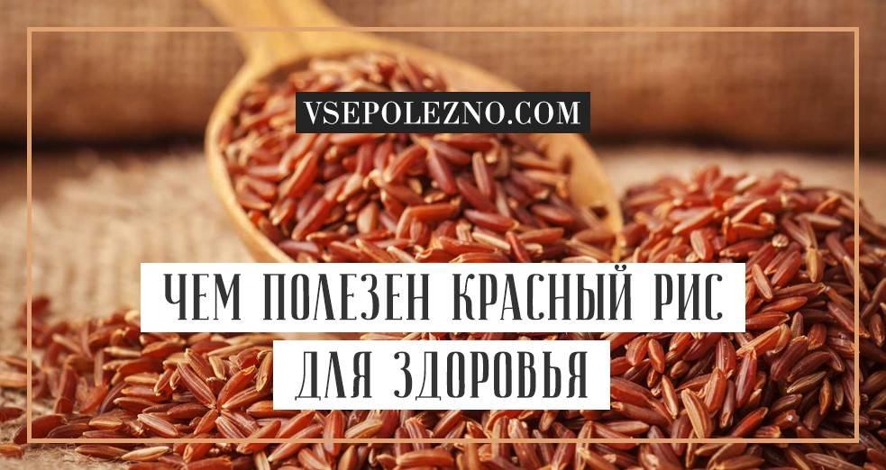 Рисовая лапша: калорийность, применение и противопоказания