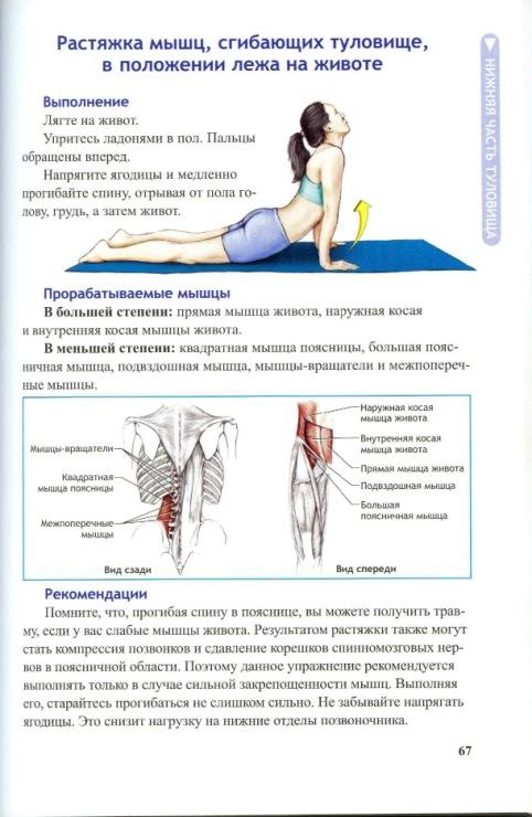 Растяжение брюшных мышц: симптомы растяжения брюшного пресса