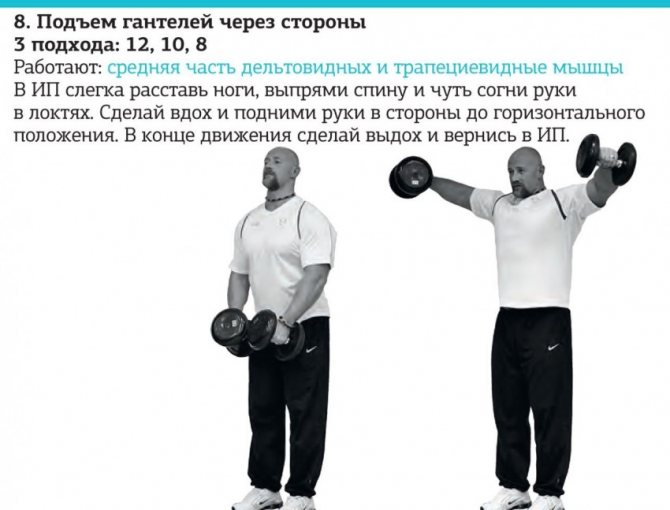 Разведение гантелей в стороны: фото и видео упражнения