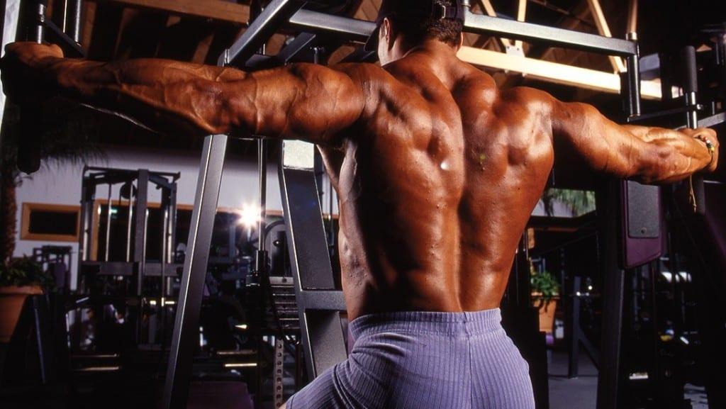 Как накачать спину: видео, упражнения, программа тренировок