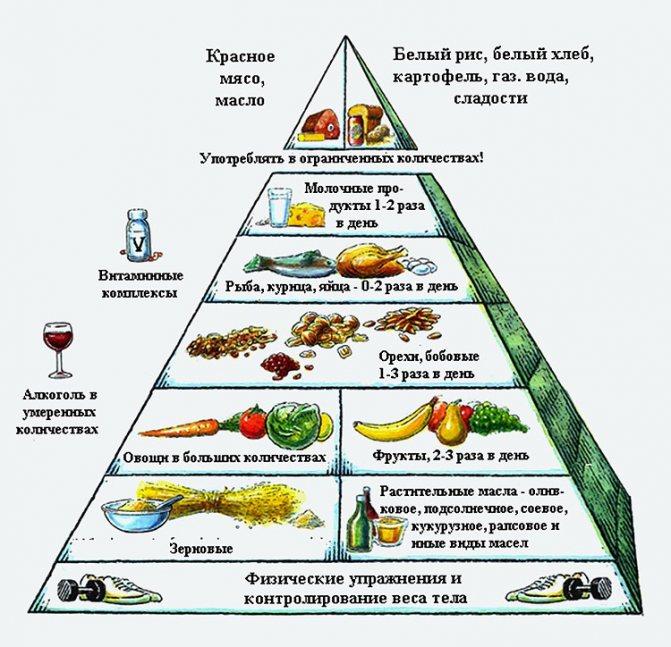 Правильный рацион с помощью пирамиды питания