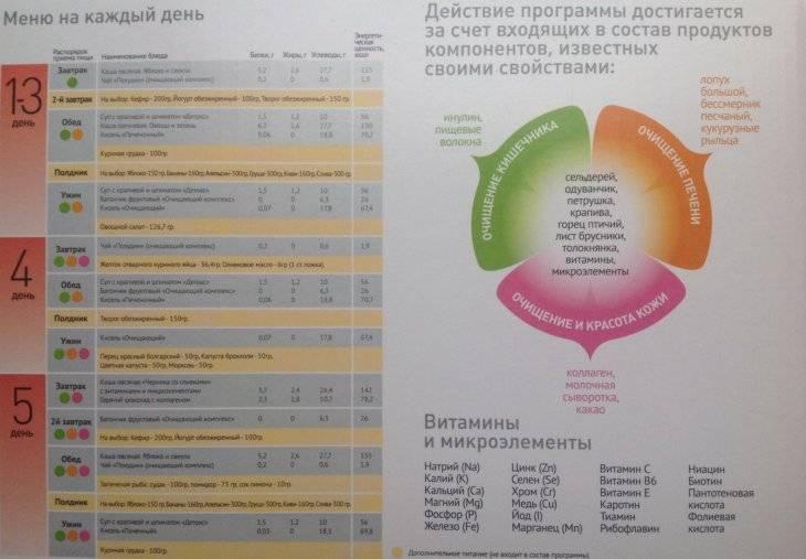 Домашний детокс - программы очищения организма по временам года, условия правильного похудение