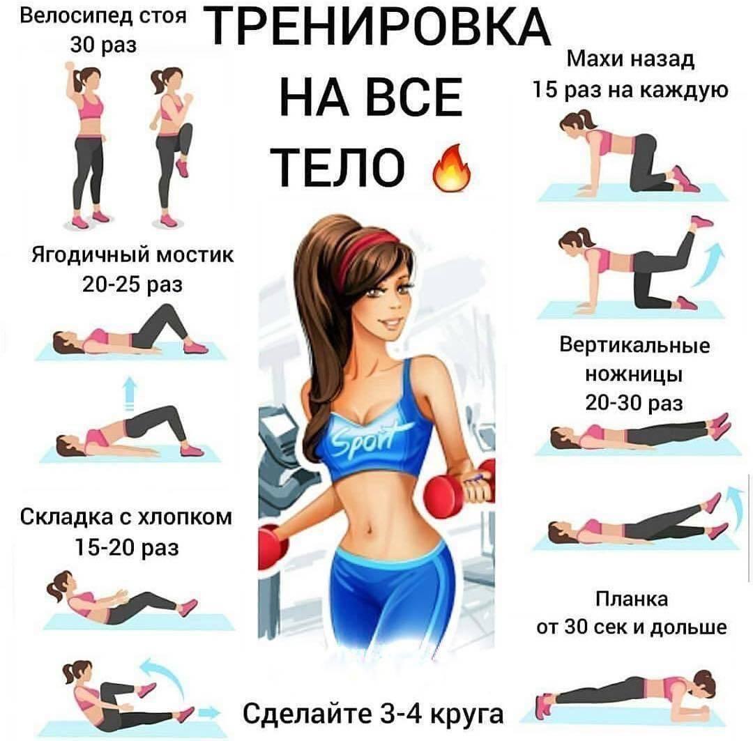 Тренировка рук для девушек в тренажерном зале, упражнения для женщин на руки для всех уровней