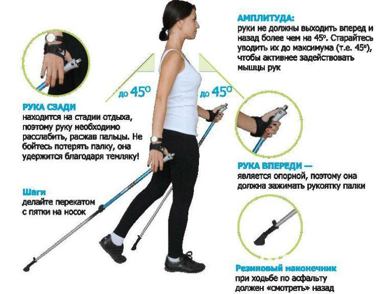 Про степпер — тренажер скандинавской ходьбы для дома