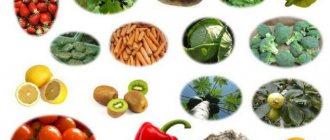 Фенилаланин – содержание в продуктах питания и напитках