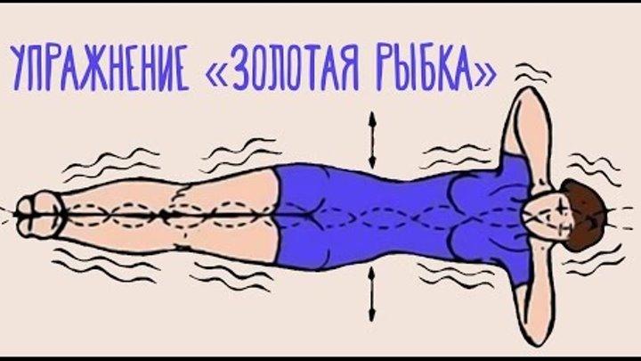 Упражнение золотая рыбка для позвоночника отзывы врачей