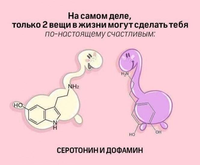 За что отвечает гормон дофамин