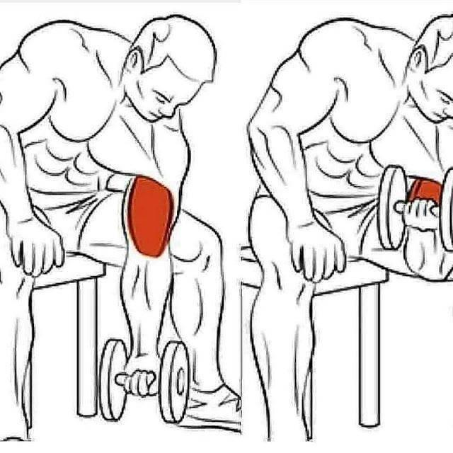 Как быстро накачать руки и грудь мужчине в домашних условиях: комплексная тренировка
