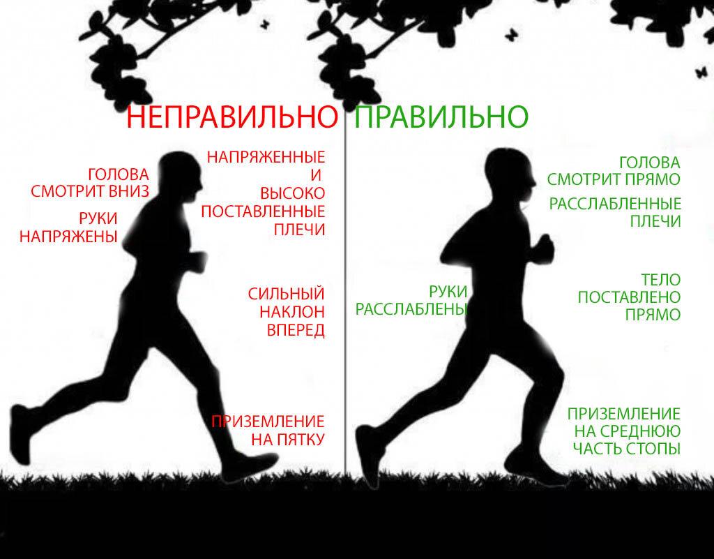 Какие мышцы работают при занятиях бегом?