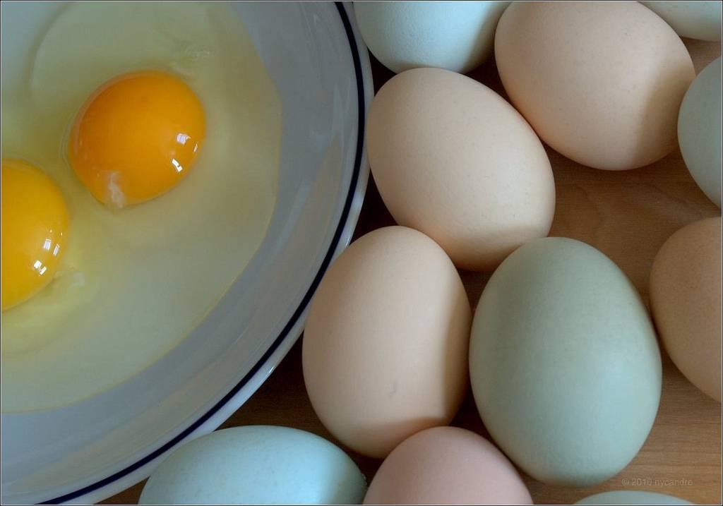 Яйца в бодибилдинге. польза и вред яиц – реальная качалка