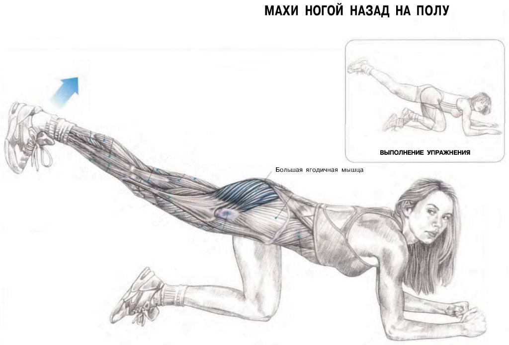 Отведение ноги на нижнем блоке назад и вбок: правильная техника, полезные советы