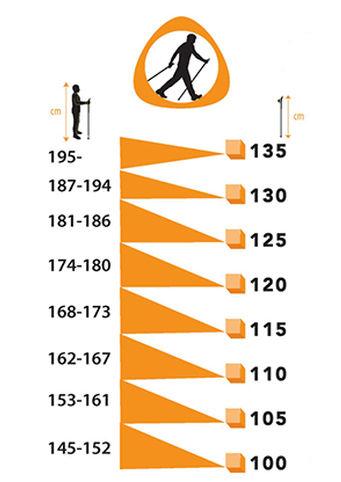 Палки для скандинавской ходьбы: как выбрать подходящие?