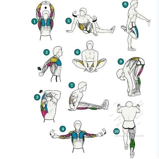 Кроссфит разминка перед тренировкой (общая, специальная, суставная): комплекс упражнений