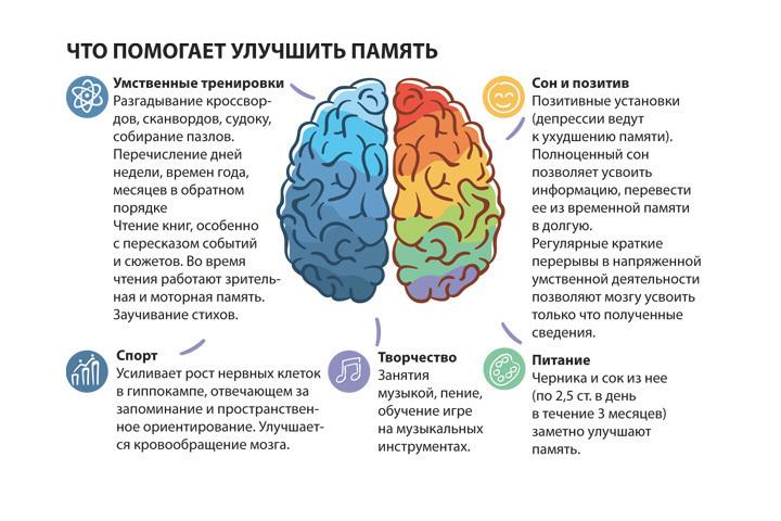 Как улучшить память и работу мозга взрослому человеку: 6 мощных методик