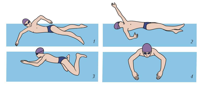 Повороты в плавании: техника разворота кролем и в брассе, кувырок в воде и маятник - как их выполняют и что нужно учитывать?