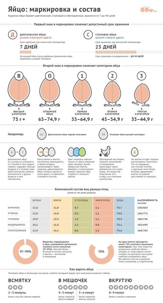Калорийность 2 яиц: пищевая ценность, способы приготовления, польза и вред - tony.ru