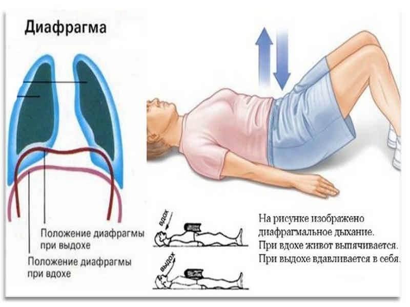 Как правильно дышать при приседании роль дыхания в выполнении упражнений