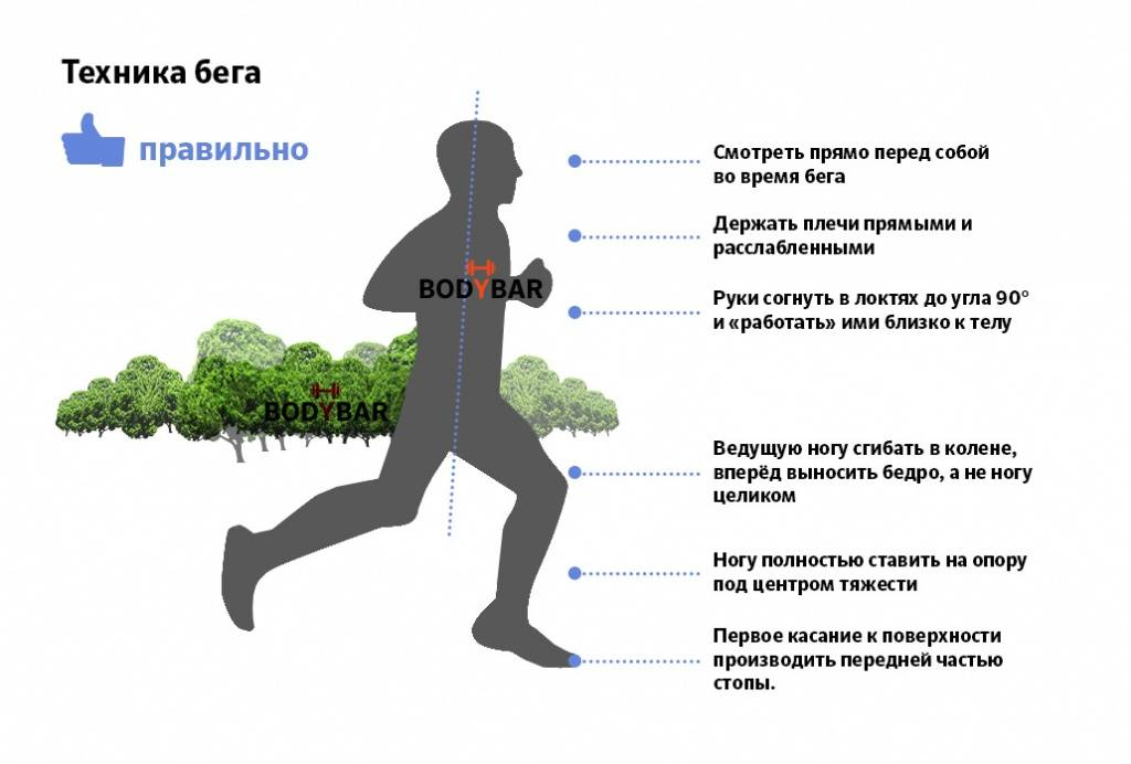 Скоростной бег и правильное развитие скоростных качеств