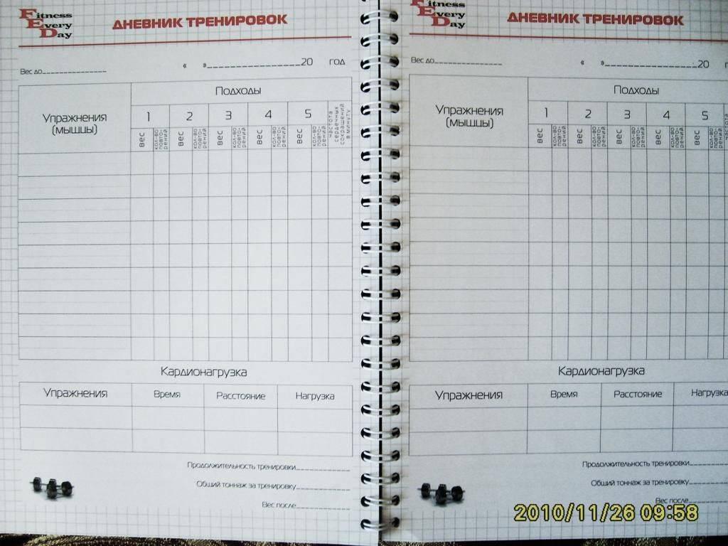 Дневник тренировок: зачем он нужен и как его вести - жизнь в москве - молнет.ru