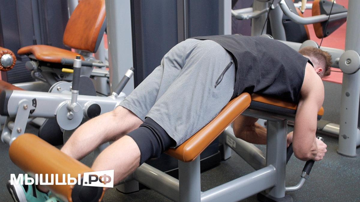 Разгибание ног в тренажере: техника выполнения, какие мышцы работают