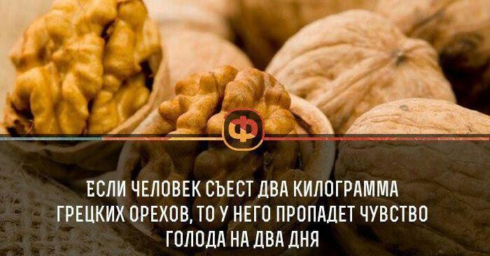 Ешь орехи и худей оставаясь сытой вместе с орешками