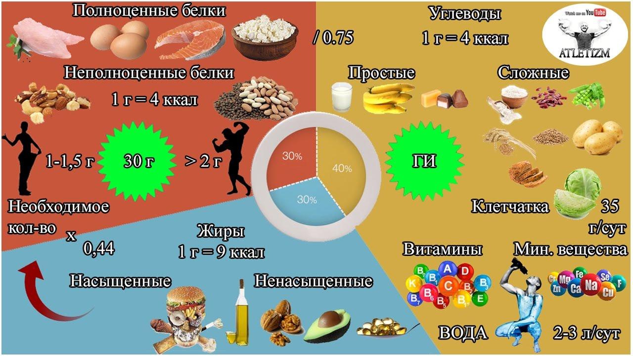 Сколько грамм белка нужно человеку в сутки для роста мышц, набора мышечной массы на 1 кг веса