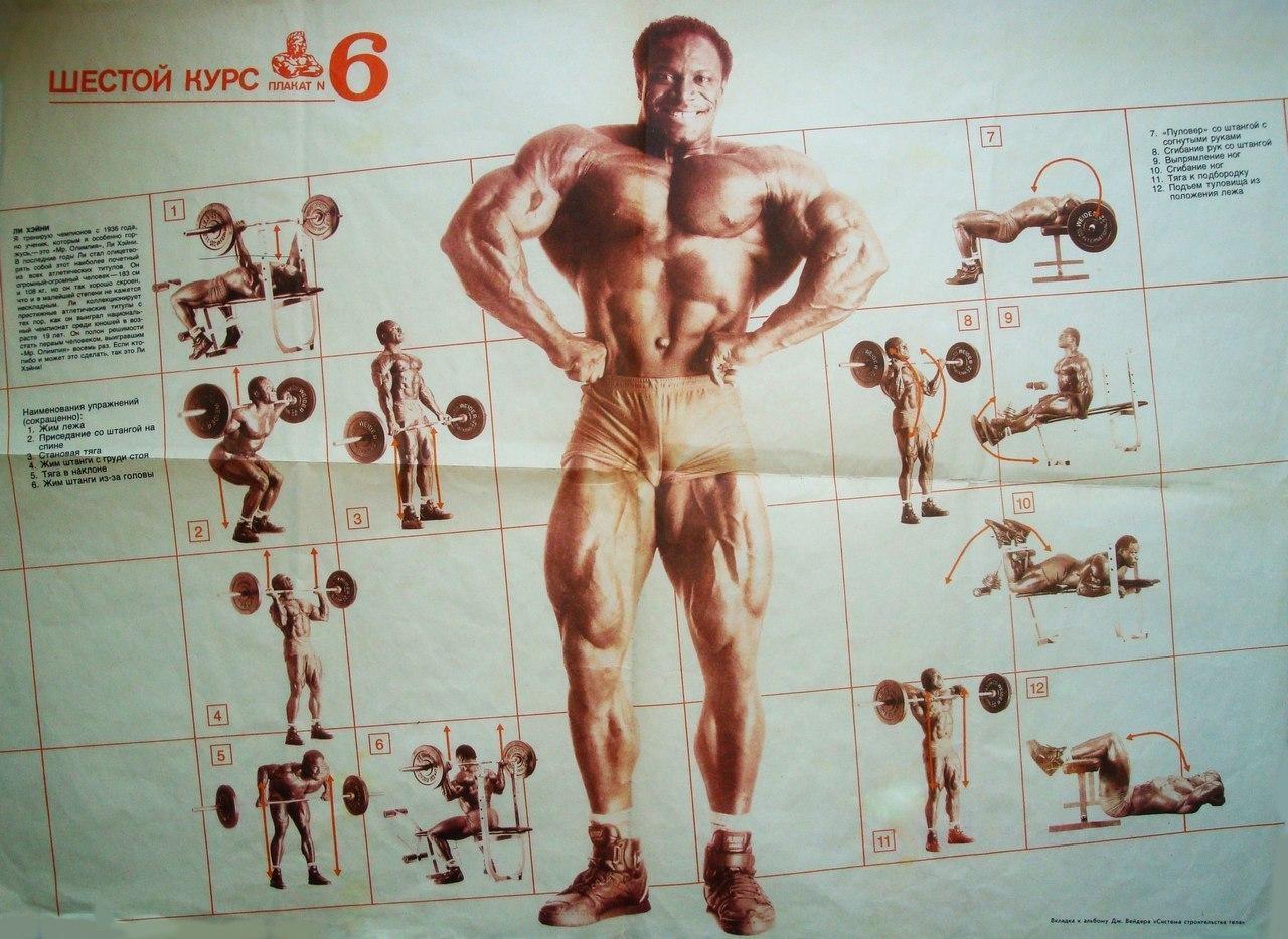 Базовые упражнения для набора мышечной массы, базовые упражнения в бодибилдинге