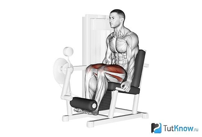 Сведение ног в тренажере: техника выполнения, какие мышцы работают