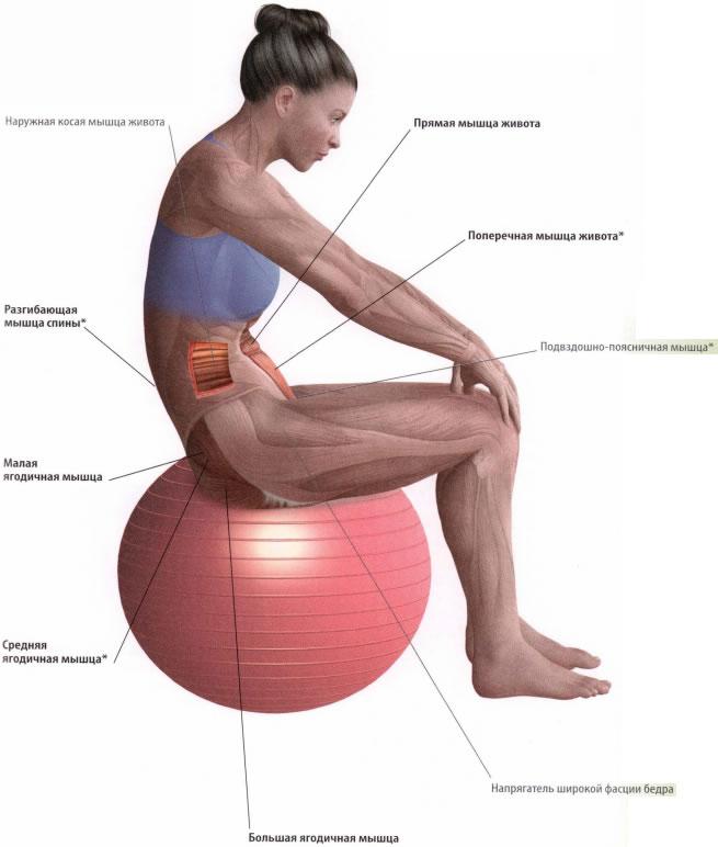 Упражнения для ягодиц в домашних условиях: как быстро, эффективно и правильно накачать упругие мышцы дома за неделю, комплекс прокачки для бразильской попы