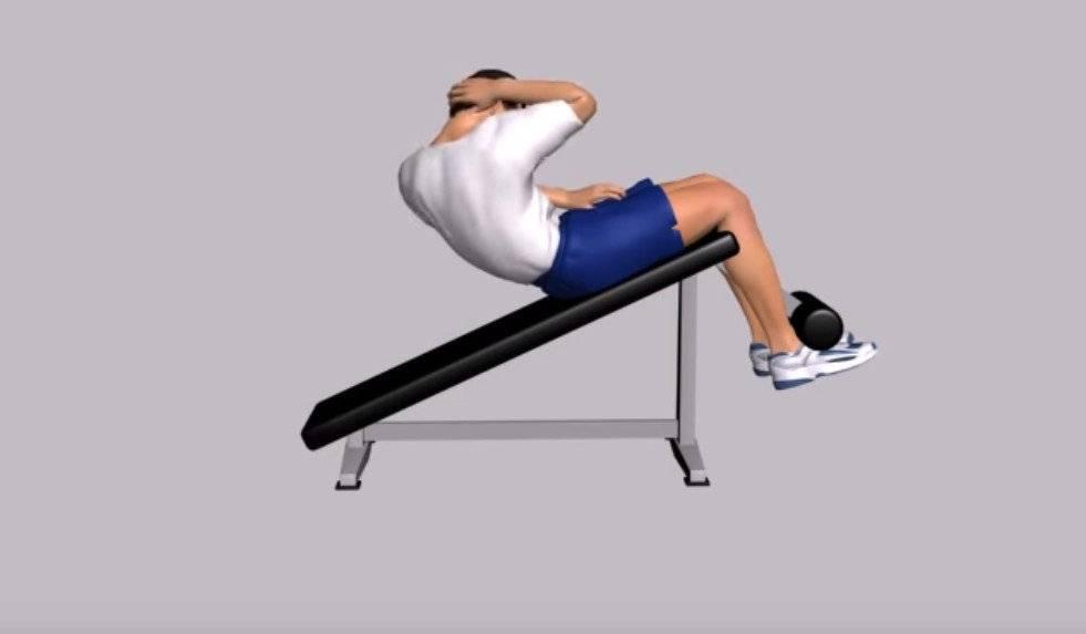 Эффективность скручиваний на наклонной скамье | rulebody.ru — правила тела