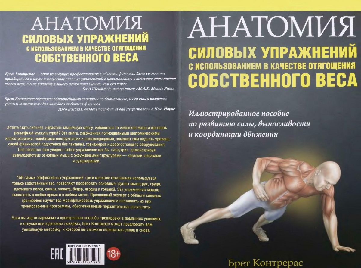 Упражнения с собственным весом на все группы мышц