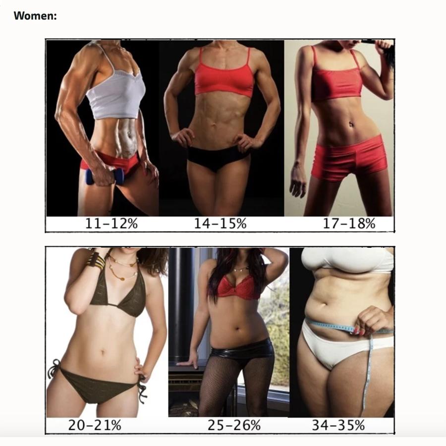 Как определить процент жира в организме и о чем говорит процентное соотношение жирвой ткани в теле