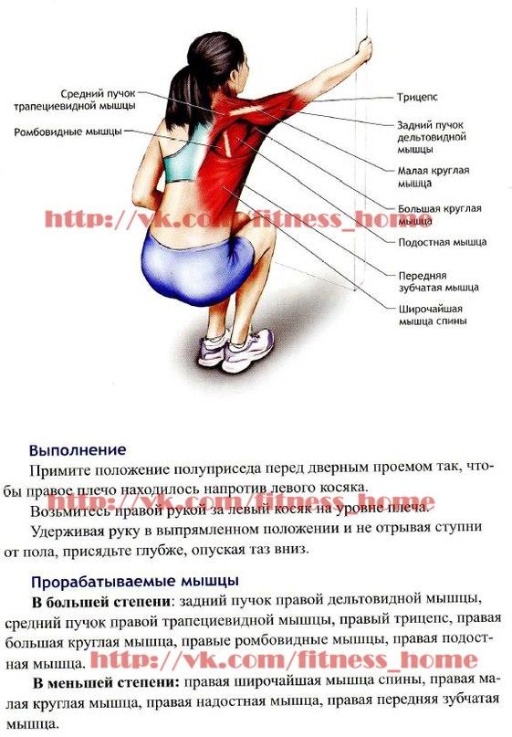 Эффективные упражнения для растяжки мышц спины
