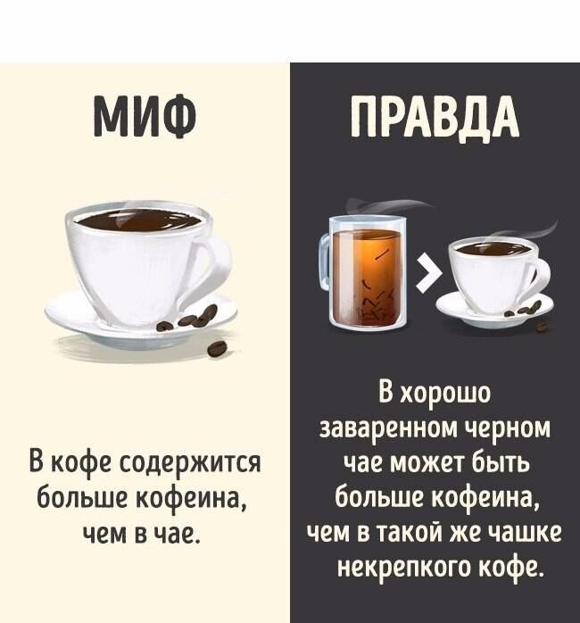 Чай или кофе - что полезнее? особенности, виды и рекомендации специалистов