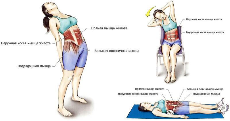 Освобождаем спину от зажимов! топ-3 лучших упражнения для растяжки мышц   lifestyle   селдон новости