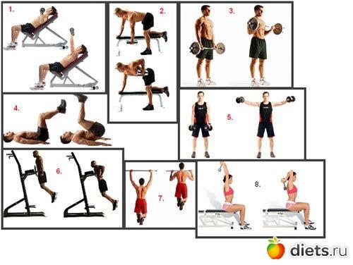 Программа эффективной круговой тренировки в тренажерном зале