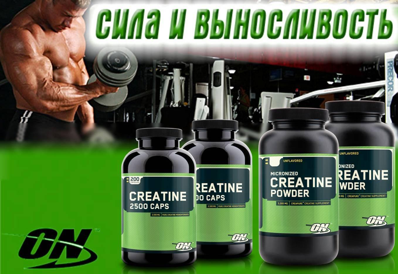 Creatine optimum nutrition 2500: состав, как принимать добавку, цена