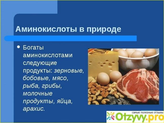 Заменимые и незаменимые аминокислоты в продуктах питания: таблица, список